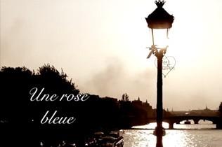 Une rose bleue